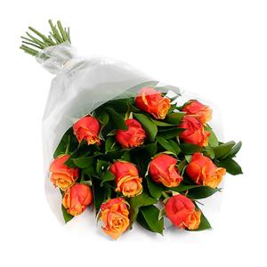 #113. Розы 13 шт
