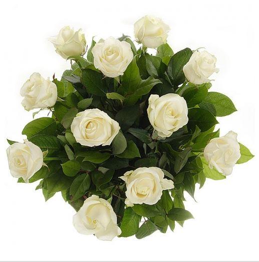 #004. Розы белые 11шт