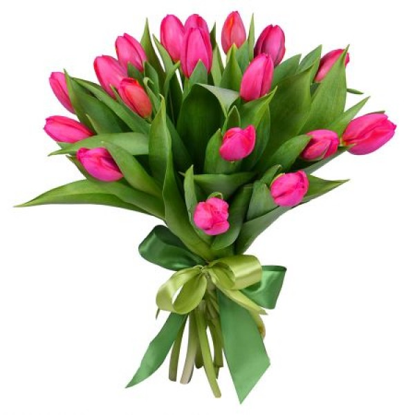 #032. 17 тюльпанов