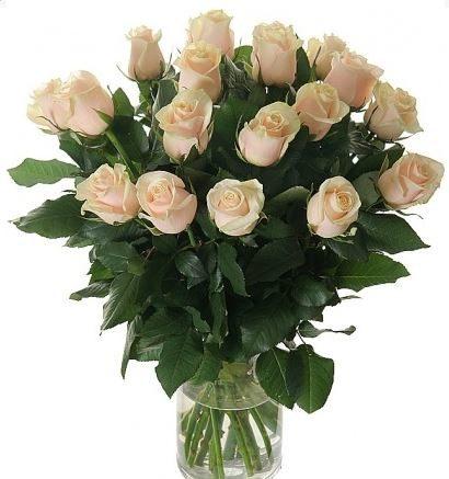#009. Розы кремовые 19шт