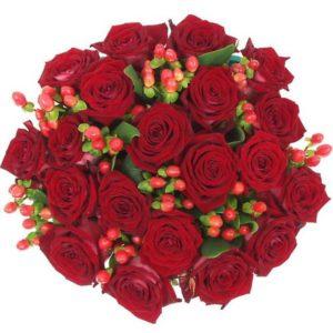 #116. Розы эквадор красные 21 шт + гиперикум
