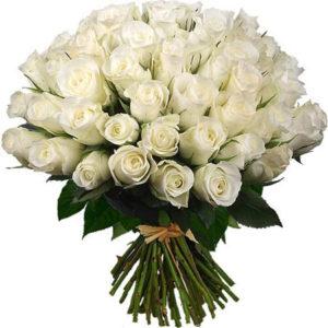 #027. Розы белые 51 шт