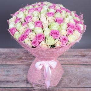 #227. Розы бело-розовые 101 шт в упаковке