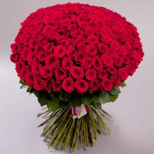 #161. Розы красные 151 шт