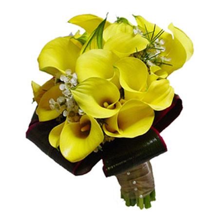 #176. Каллы желтые
