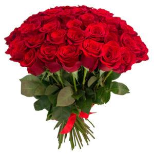 #223. Розы красные 75 шт