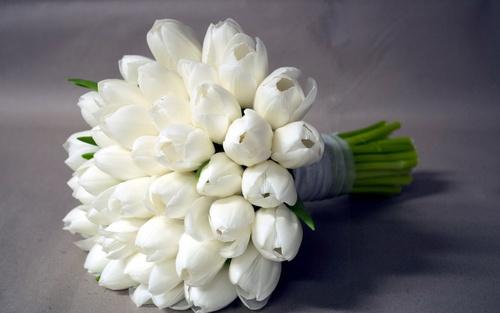 # 244 Белые тюльпаны