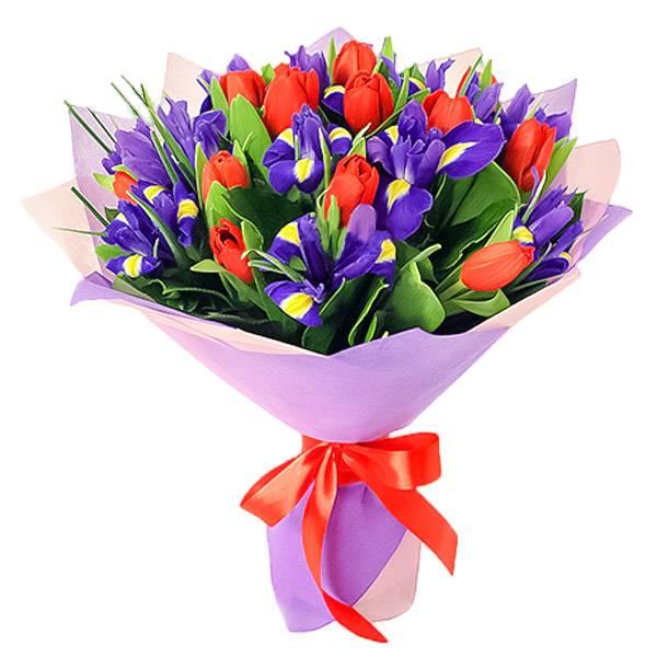 Букеты из тюльпанов с ирисами фото, собачка