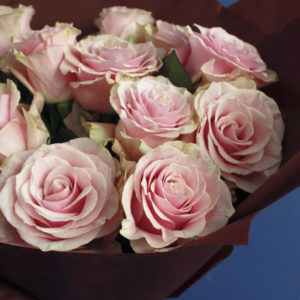 # 489 25 роз в упаковке