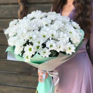#145. Хризантемы кустовые