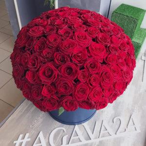 # 490 Коробка из 151 красной розы