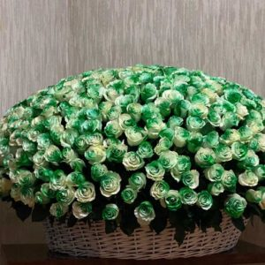 #597 Корзина 501 бело-зеленая роза