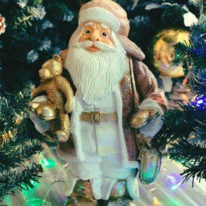 #548 Дед Мороз с медвеженком