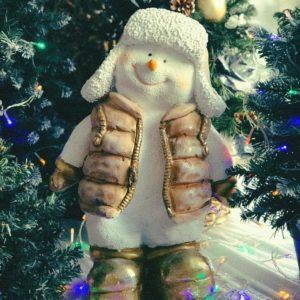 #553 Снеговик в курточке