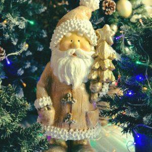 #554 Дед Мороз с ёлочкой