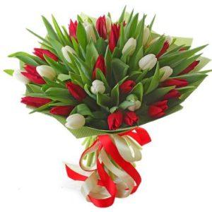 #038. 33 тюльпана
