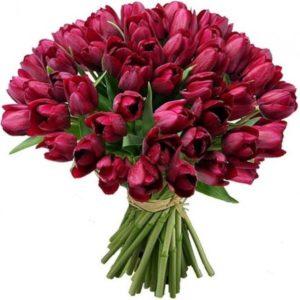 #042. 51 тюльпан