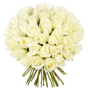 #139. Розы белые 51шт