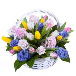#424 Корзина с гиацинтами и солнечными тюльпанами